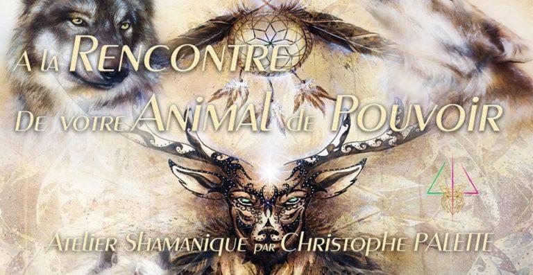 SAMEDI 28 MARS 14H-17H<br>A LA RENCONTRE DE VOTRE ANIMAL DE POUVOIR<br>Atelier Shamanique