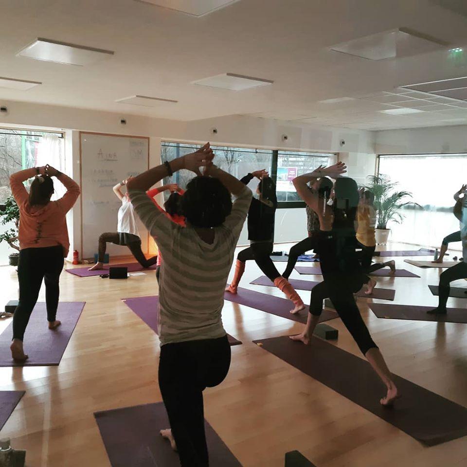 "Yoga  avec ""Gecko Yoga"""
